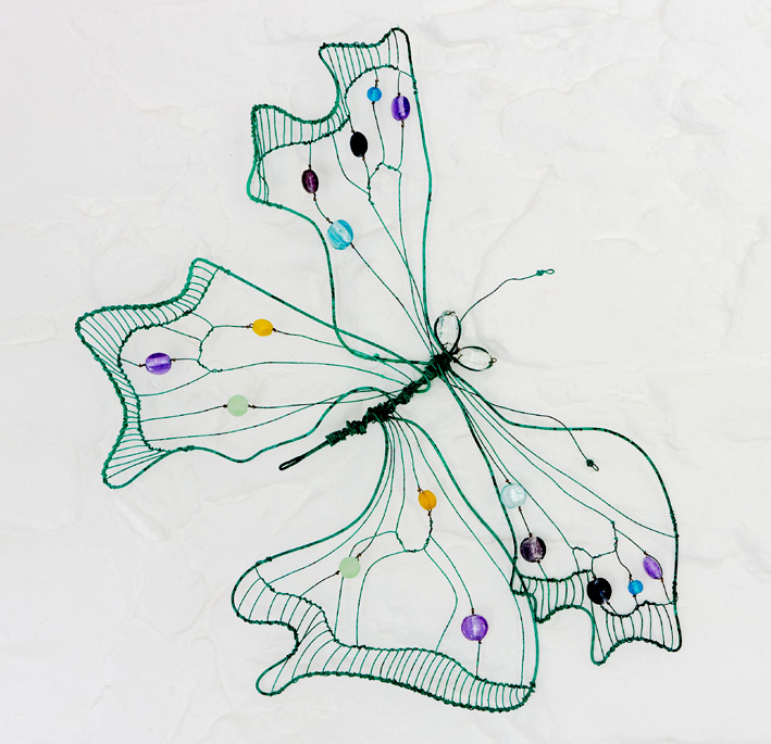 Butterflies & Dragonflies Gallery