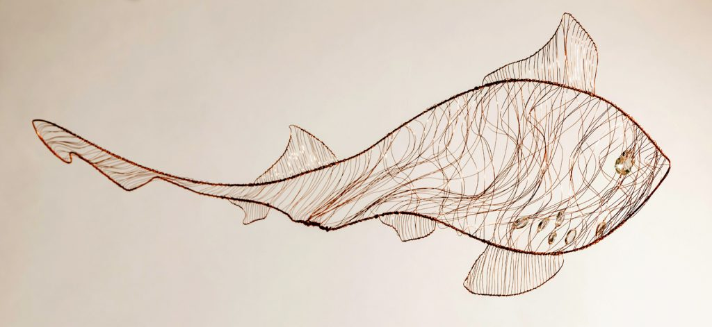 Starry Smooth Hound Shark - 2m x 1m x 30mm